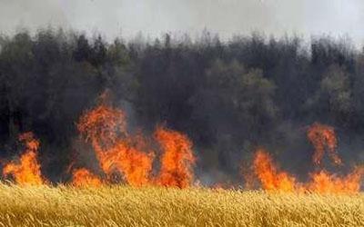 حوادث-آتش سوزی-سرپل ذهاب