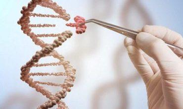 بیماری های قلبی و عروقی-جنین-جهش ژنتیکی