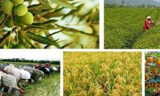 حقوق و دستمزد-کشاورزان-کشاورزی