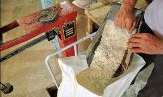 خریدبرنج-رکود بازار-مازندران
