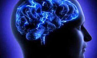 چاقی-دیابت-فشارخون بالا-مغز
